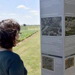 Informationsstele am Herzog-Magnus-Denkmal; Juni 2017